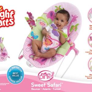bright starts baby bouncer in pakistan