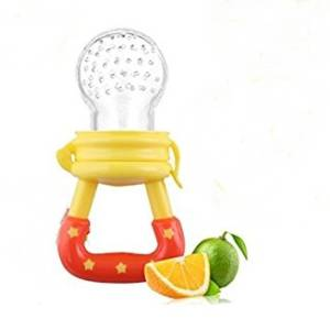 baby fresh fruit feeder