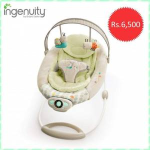 baby bouncer chair price in pakistan