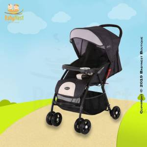 Stroller and Booster for Baby